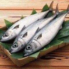 К чему снится ловить рыбу удочкой женщине?
