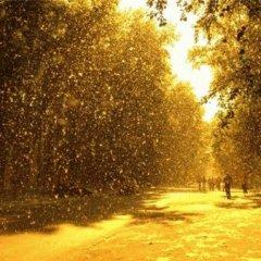 К чему снится зима летом?