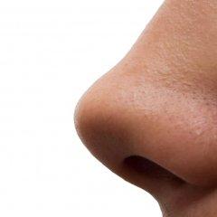 Что значит видеть нос во сне — нюансы расшифровки по сонникам