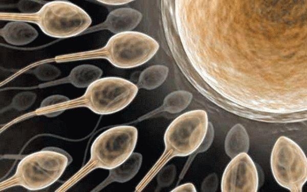 Полиция дубинка женские гениталии в сперме в бане