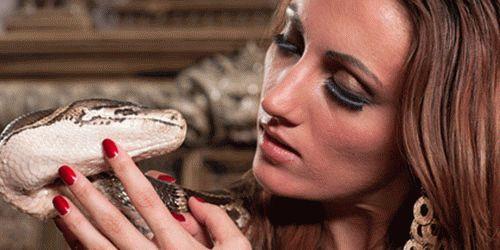 К чему снится много змей женщине?