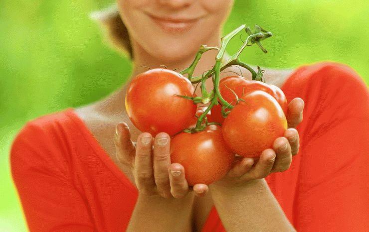 к чему снится собирать неспелую помидору ткани предпочтительнее тем