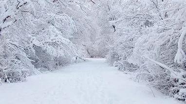 К чему снится снег белый чистый сонник