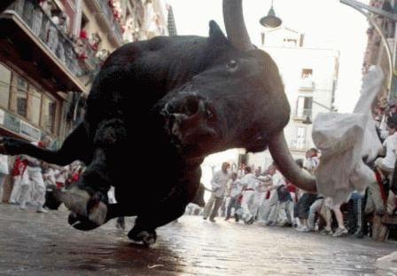 К чему снится бык женщине?