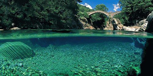 К чему снится чистая и прозрачная вода?