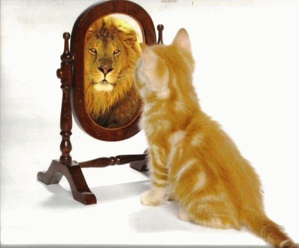 Активное самовнушение на уверенность в себе