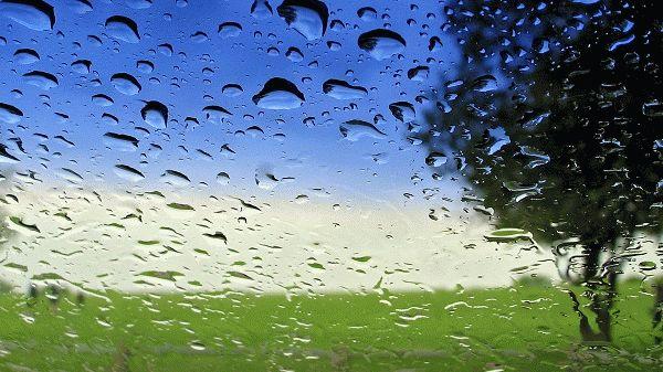 приметы к дождю