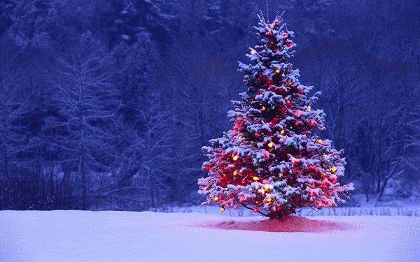 ель - символ Нового года