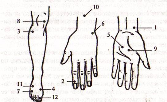 энергетические точки на теле человека