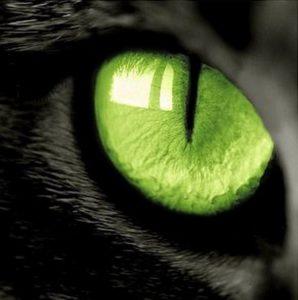 Какими волшебными свойствами обладает кошачий глаз