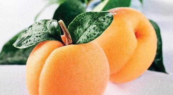 Абрикосы во сне: хорошее или плохое предзнаменование, к чему снятся абрикосы
