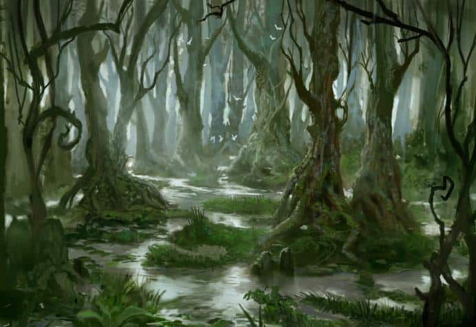 Лес с болотом