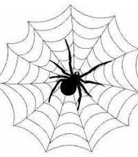 Приснился укус паука: толкуем по Фрейду