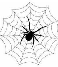 Сонник паук кусает за ногу