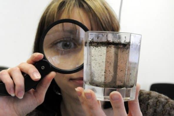 Приснилась грязная вода — особенности толкования разных сонников