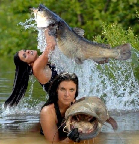 Ловим рыбу
