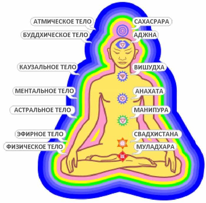 функции тонких тел
