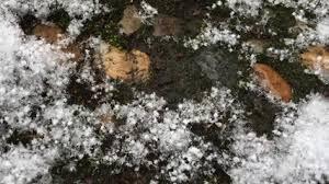 К чему снится зима по соннику Миллера, Цветкова, Фрейда