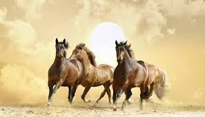 Три лошадки