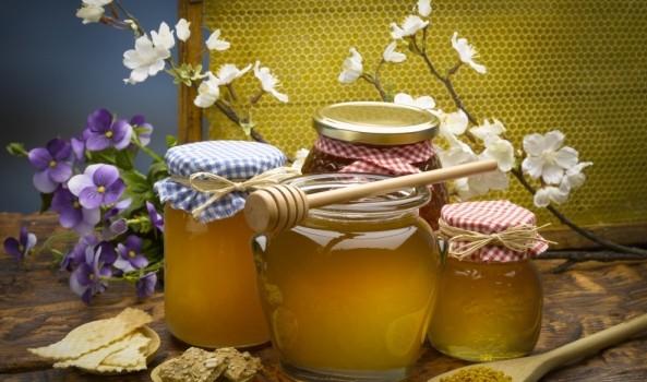 Приснился мед — особенности толкования по сонникам