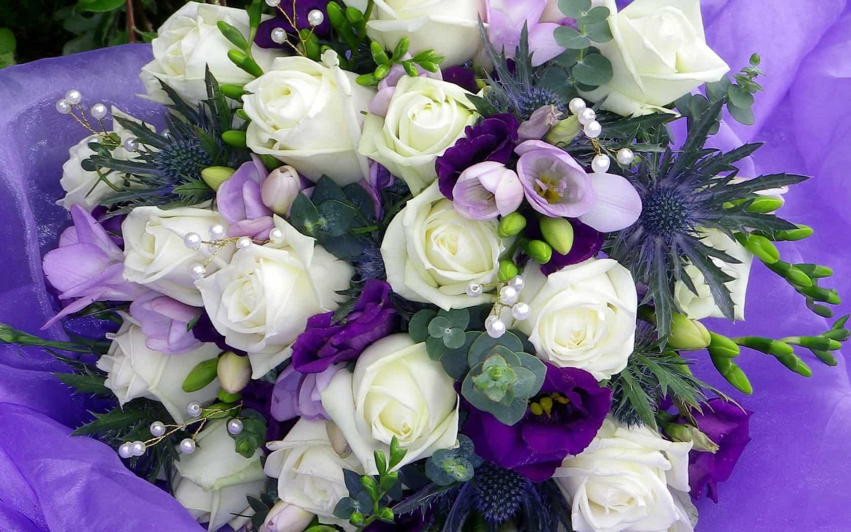 Белый и фиолетовые розы