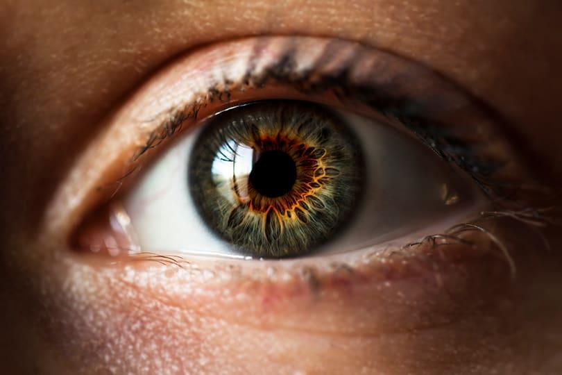 болезни глаз - нежелание видеть что-то
