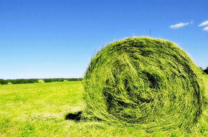 Завернутое сено