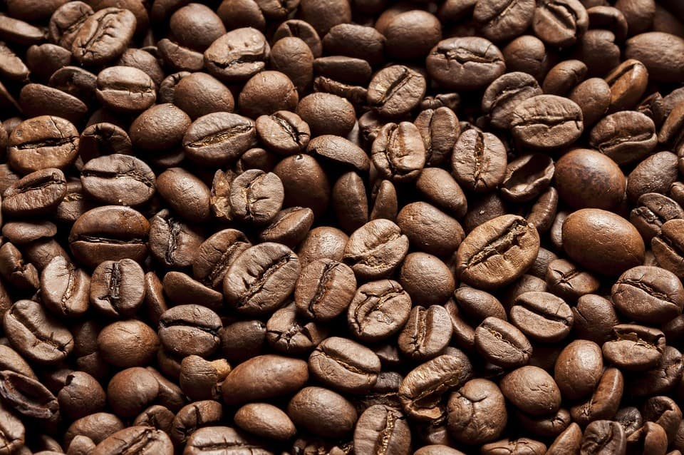 coffee bean assignment Ab 299 unit 7 assignment choosing a global supplier for more course tutorials visit wwwuophelpcom in order for tim's coffee shoppe to be successful, tim will have to be sure he has a consistent and reliable supply of coffee beans.