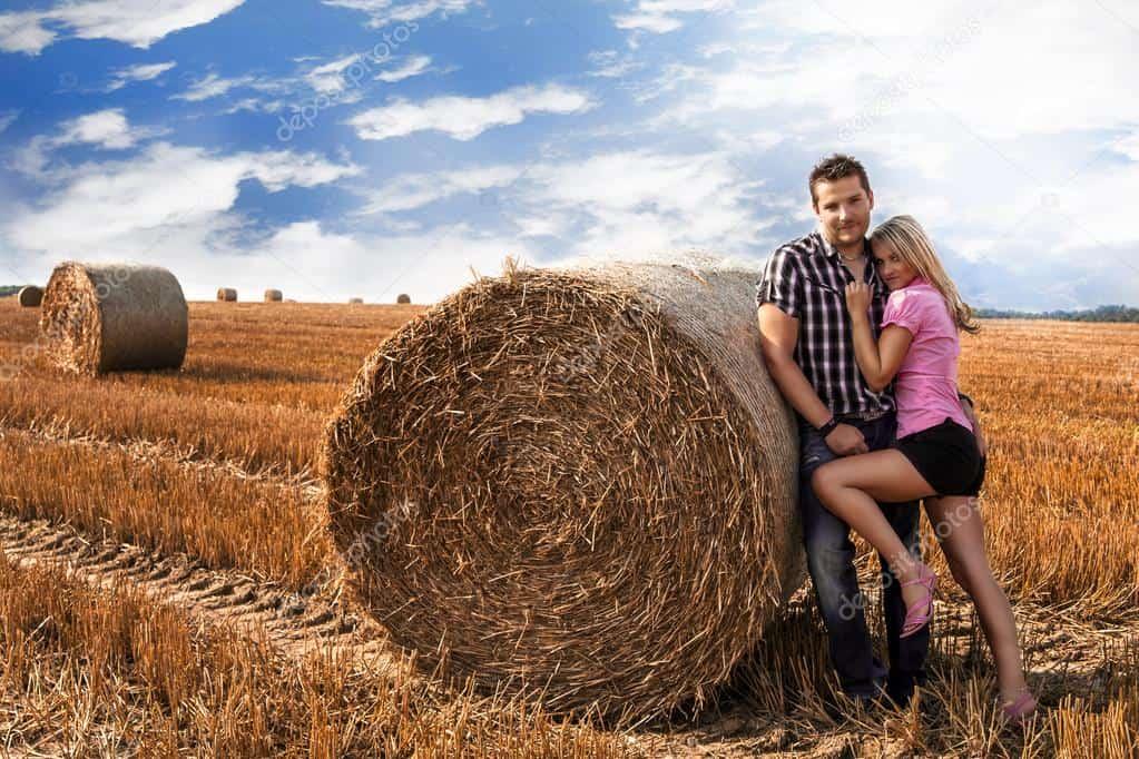 На поле у сена