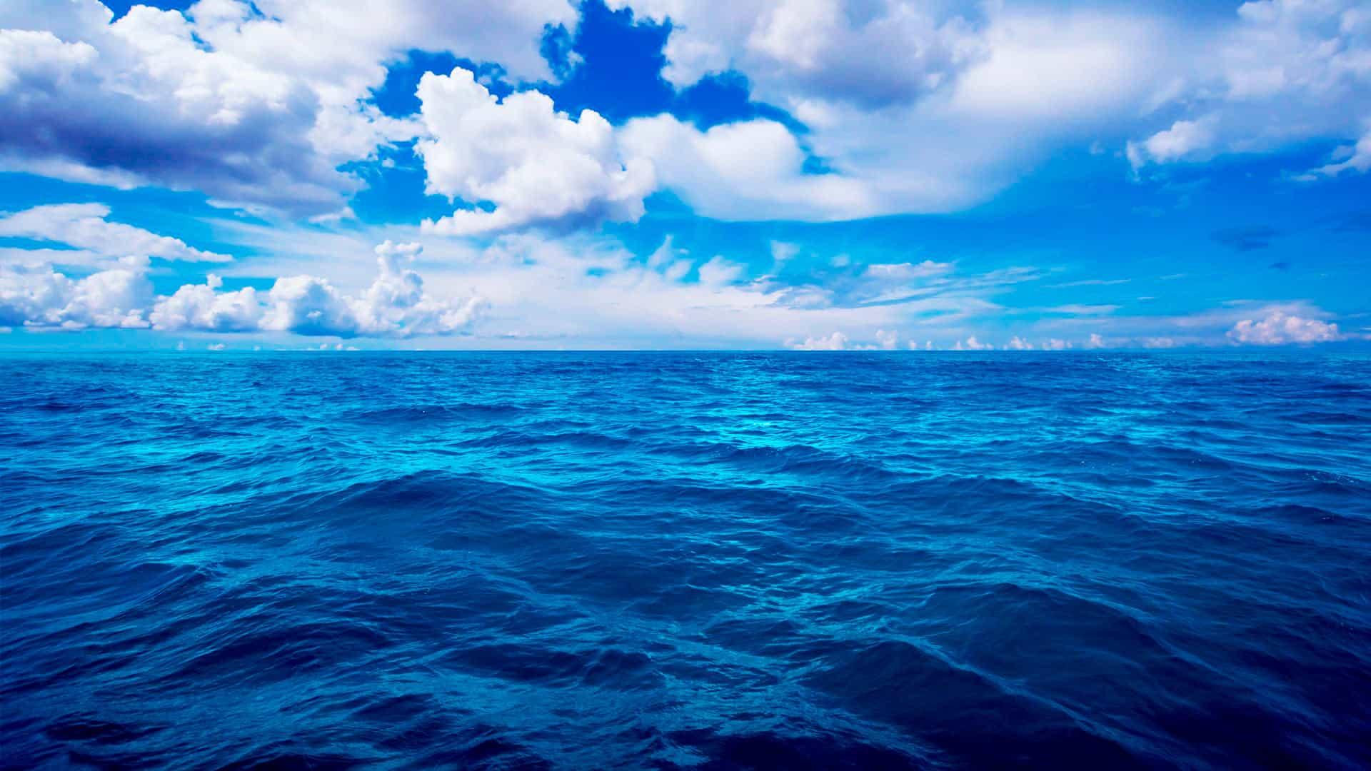 Влияние сна про море на жизнь увидевшего — толкование по сонникам