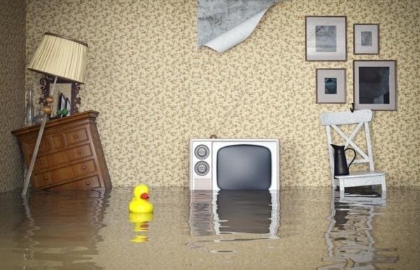 Вода в комнате