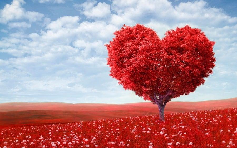 Клаус Джоул: особенности медитации на раскрытие потока любви