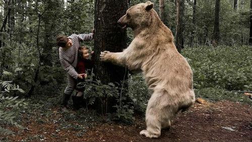 Светлый медведь