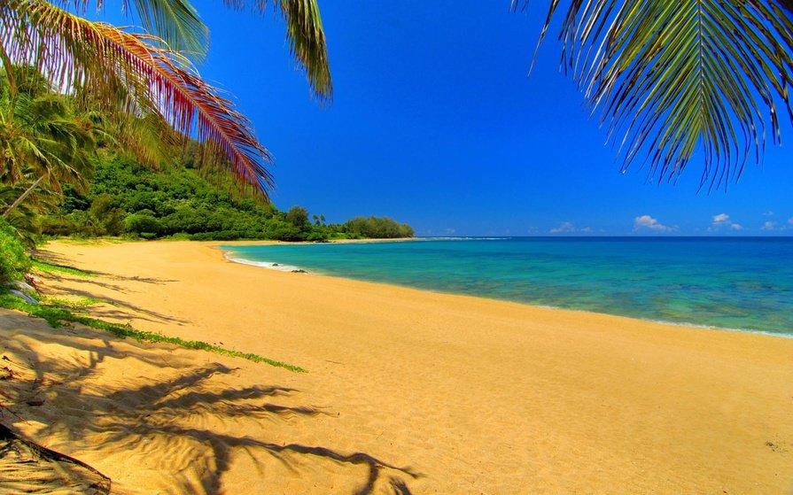 Почему в сновидениях появляется пляж – положительные и отрицательные трактовки