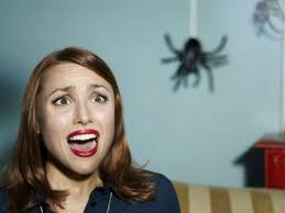 Страх девушки перед пауком