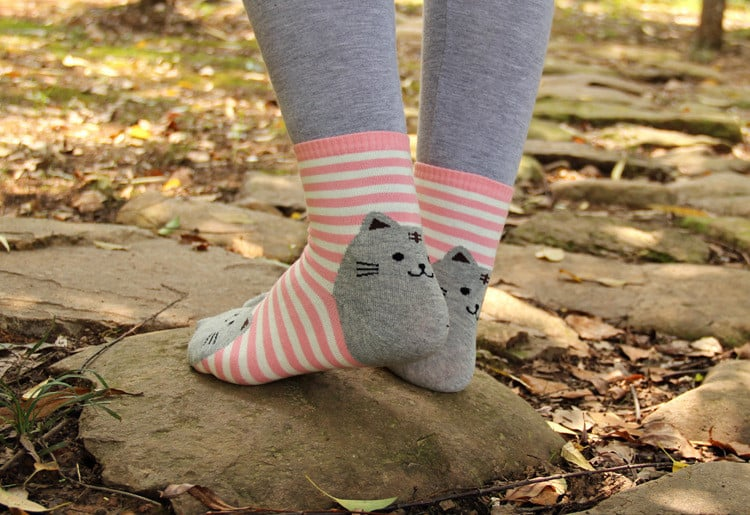 Носки с котиками