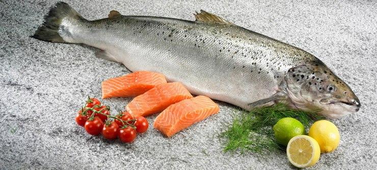 Рыба для приготовления