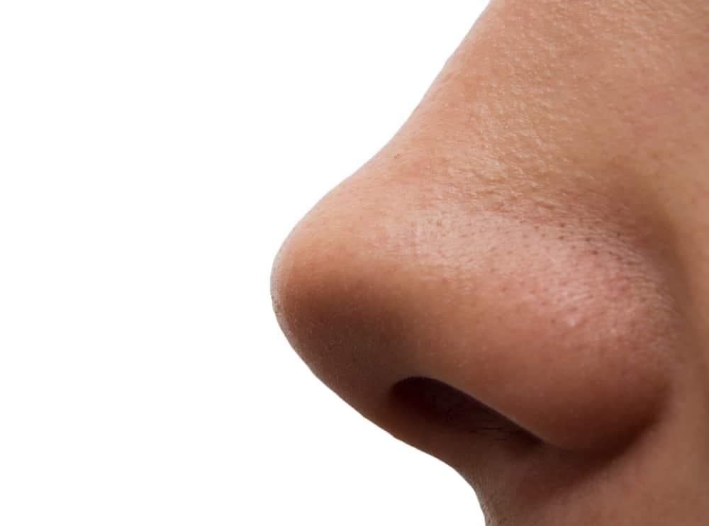 Нос в профиль