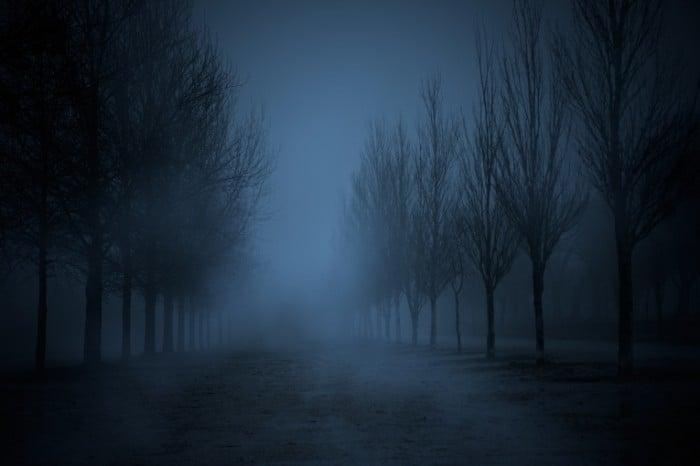Ночь в тумане