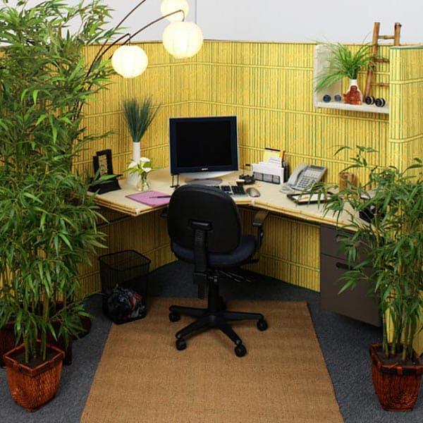 Фэн-шуй офиса: подготовительный этап, как выбрать место