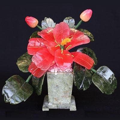 цветы в доме фен шуй