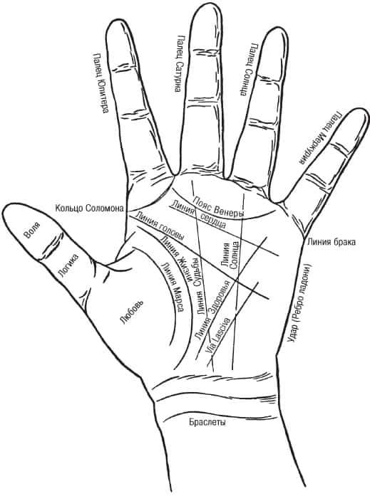 значение линий на руке