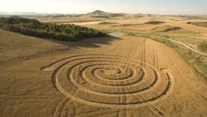 круги на полях это тоже мандалы