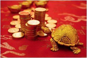 черепаха привлекает деньги
