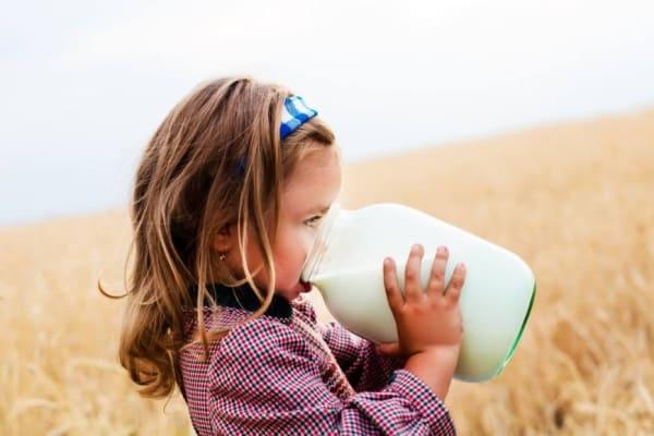 Полная банка молока: короткое и развернутое объяснение сна