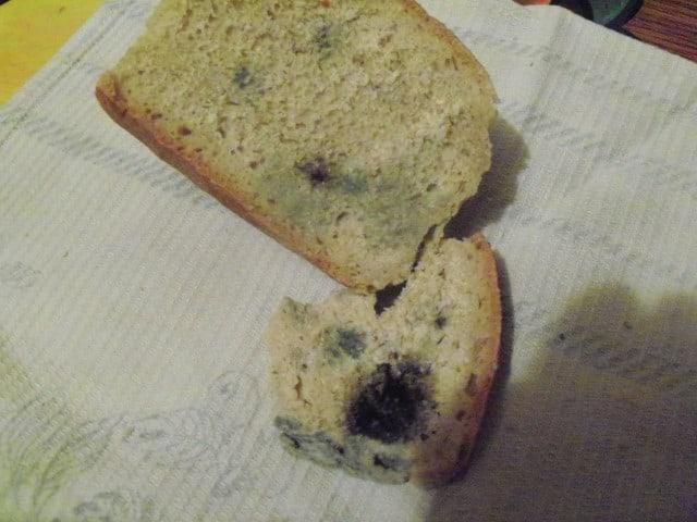 Ломтик хлеба с плесенью