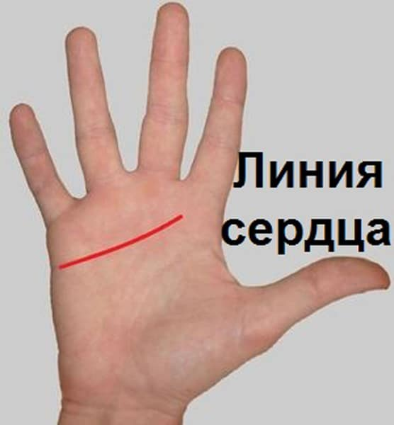 Значение линии любви на руке в хиромантии