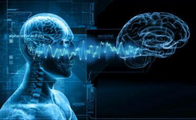 тета волны мозга