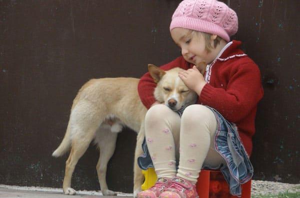 важно в следующем году проявлять доброту и сострадание