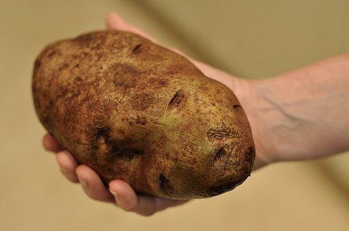 Большая картошка